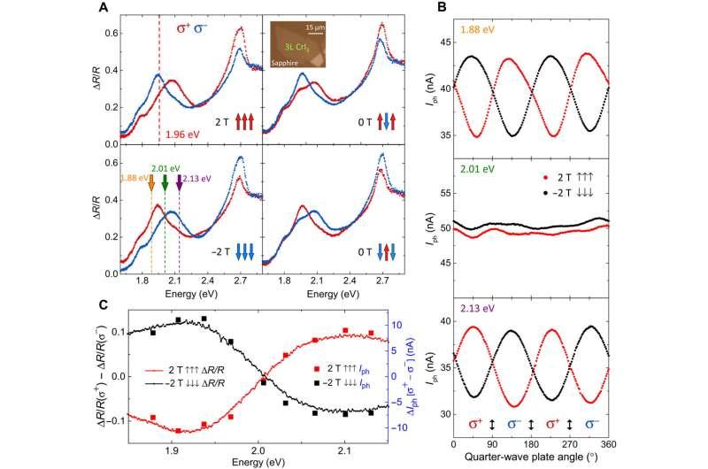 Spin photovoltaic effects in magnetic van der Waals heterostructures