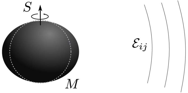 Spinning black holes could deform under an external and static gravitational field