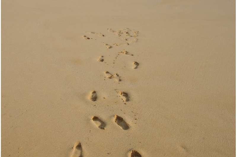 steps on sand