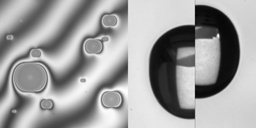 Stretching a substrate provides a faster way to control anisotropic wetting