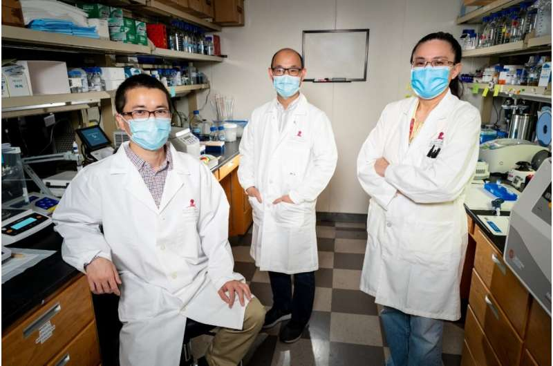 Structure of enzyme that causes Parkinson's promises pathways to new drugs