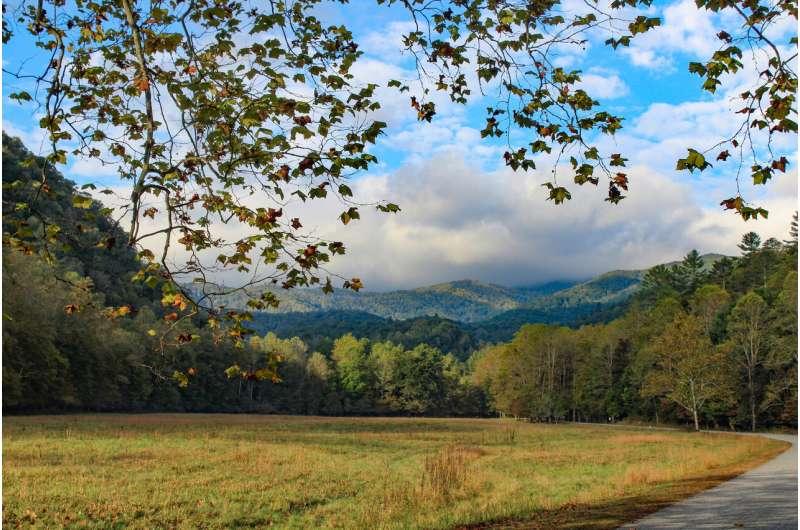 Studies of U.S. national parks are trending down, focused on popular parks