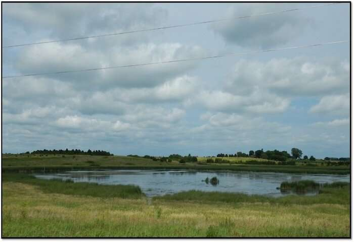 Study: constructed wetlands are best protection for agricultural runoff into waterways