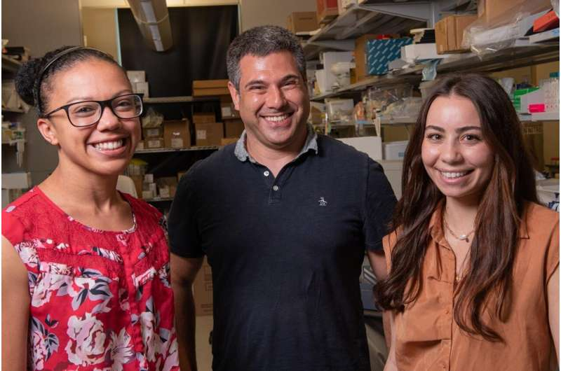 Study examines how breast implant surfaces affect immune response