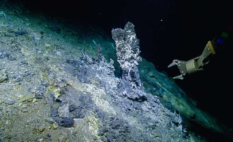 Study examines the role of deep-sea microbial predators at hydrothermal vents