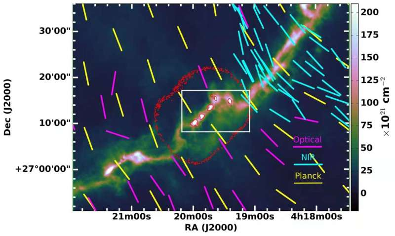 Study reveals diverse magnetic fields in solar-type star forming cores