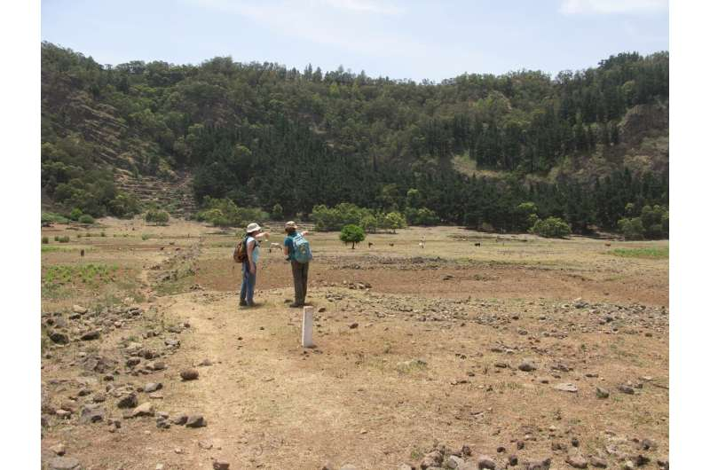 Study reveals extent of impact of human settlement on island ecosystems