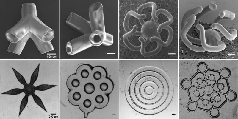 Super productive 3D bioprinter could help speed up drug development