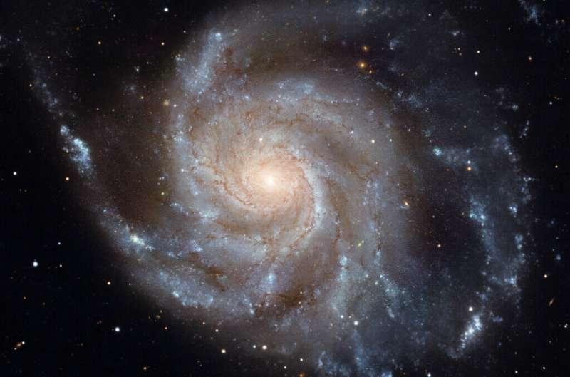 Supermassive black holes put a brake on stellar births