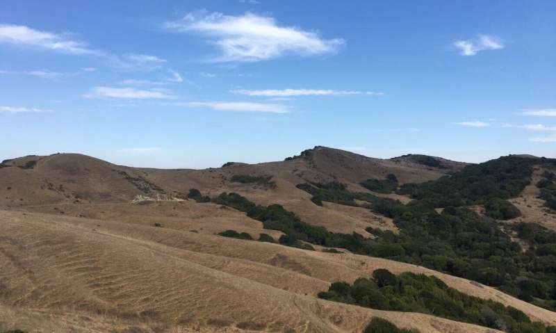 Surprising news: drylands are not getting drier