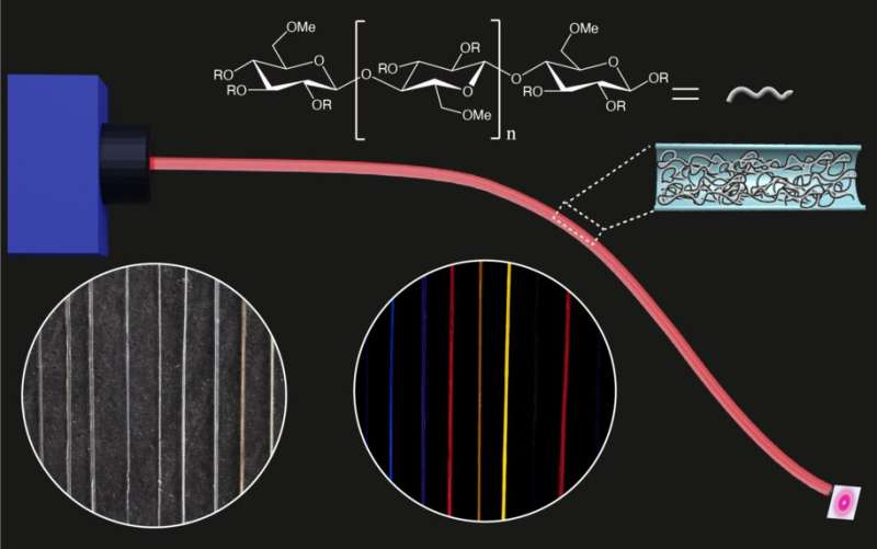 Sustainable optical fibres developed from methylcellulose