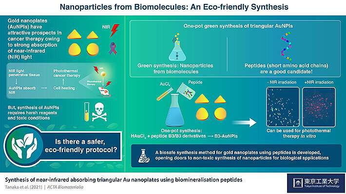 Synthesizing green gold nanoparticles for cancer therapy with biomolecules