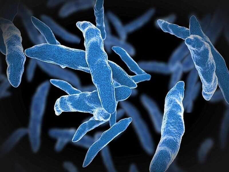 TB outbreak may be linked to bone repair product