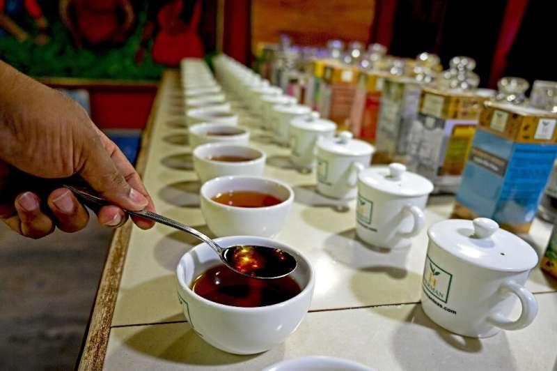 El té es la mayor exportación de Sri Lanka y genera alrededor de $ 1,250 millones al año.