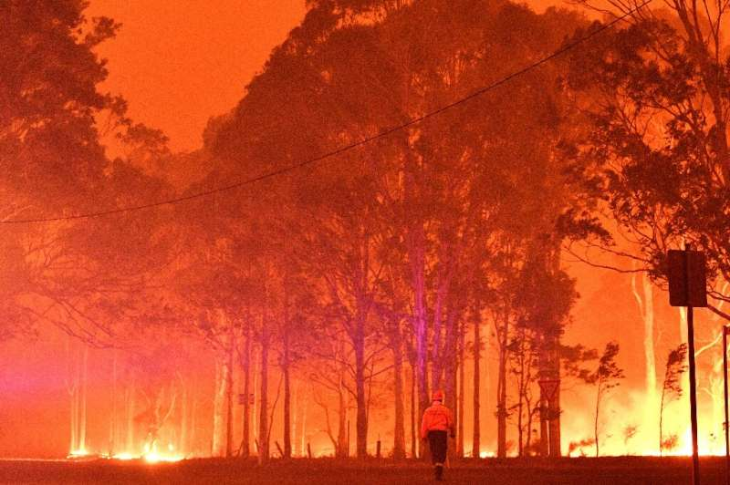 The Australian wildfires were some of the worst on record