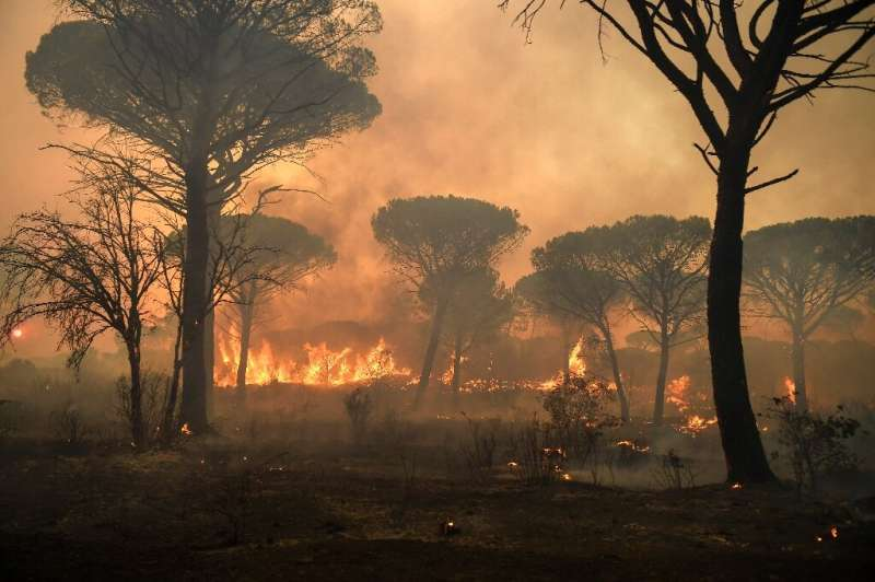 The blaze has scorched some 5,000 hectares in a region known for its forests and vineyards
