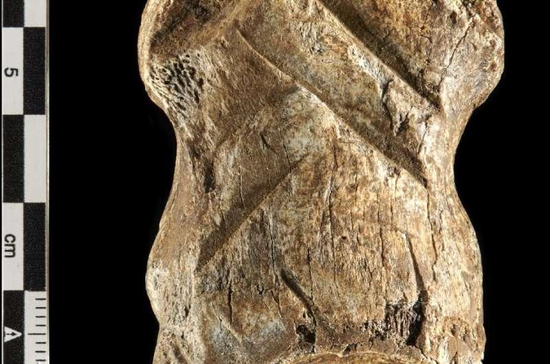 El hueso se describe como 'una de las expresiones culturales más complejas de los neandertales'