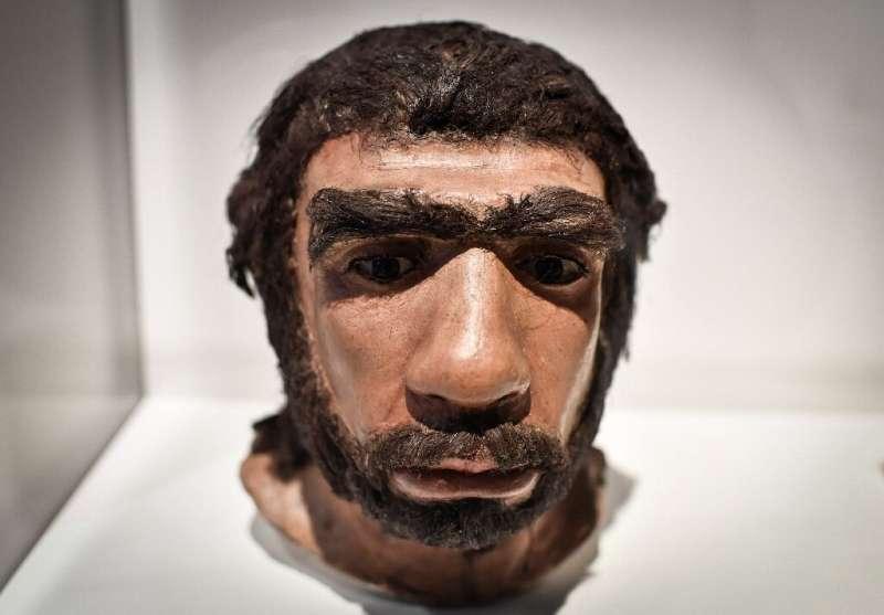 La escultura sugiere que los neandertales pueden haber influido en el Homo sapiens y no al revés.