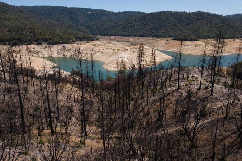 Los árboles carbonizados que salpican el paisaje alrededor del lago Oroville son un claro recordatorio del aumento del riesgo de incendios forestales como resultado