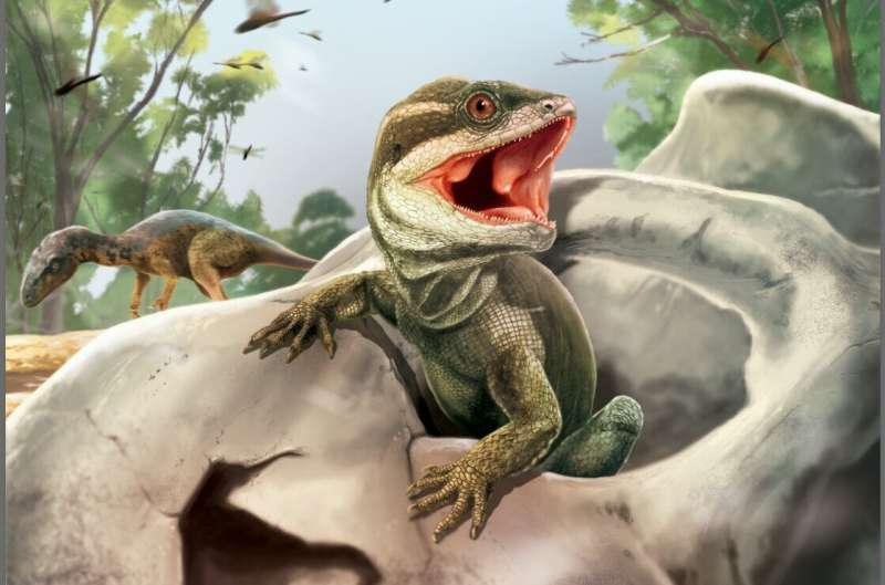 The dawn of modern reptiles