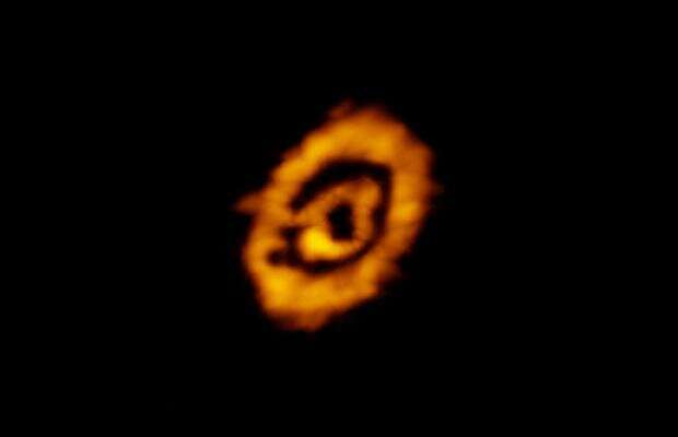 The dust and gas in protoplanetary disks