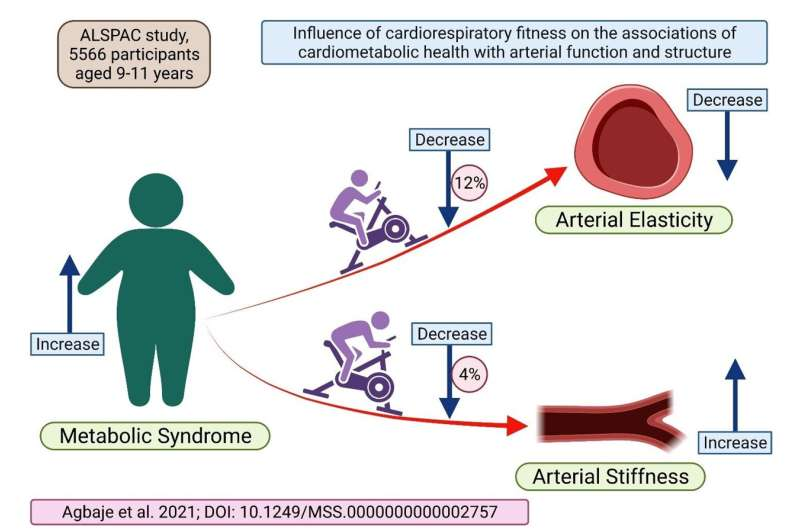 The effect of metabolic syndrome traits on atherosclerosis can be reduced by increasing cardiorespiratory fitness already in chi