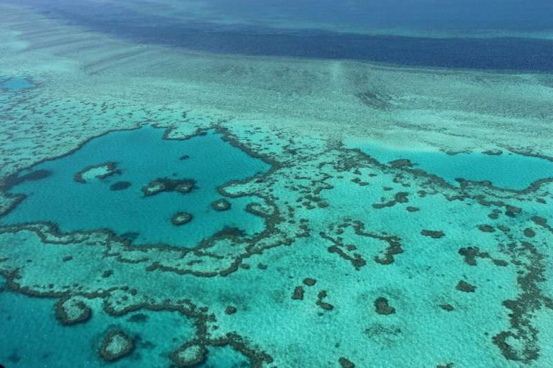 The Great Barrier Reef is the world's largest living structure and is visible from space