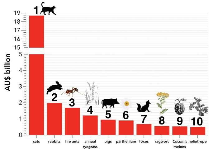 The price of pests: Australia's $390 billion invasive species bill