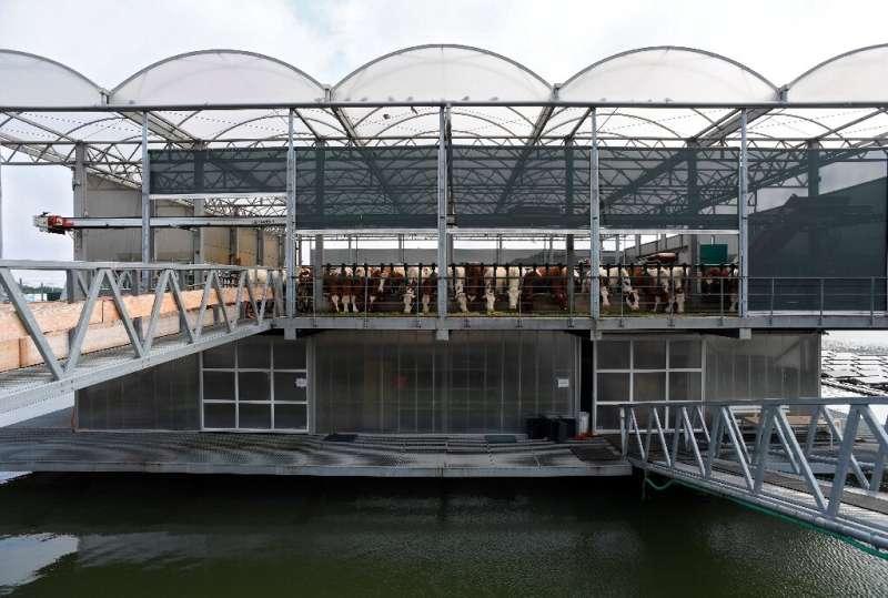 La plataforma de vidrio y acero de tres pisos tiene como objetivo mostrar el & quot; futuro de la cría & quot;