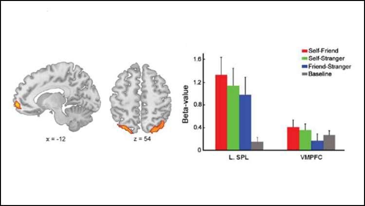 The brain region responsible for self-bias in memory