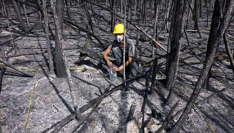The persistent danger after landscape fires