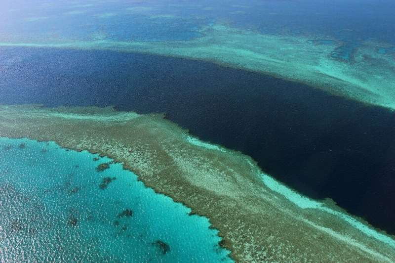 """There are fears that an """"in danger"""" listing could dent the massive global appeal of the reef—the glittering jewel in A"""
