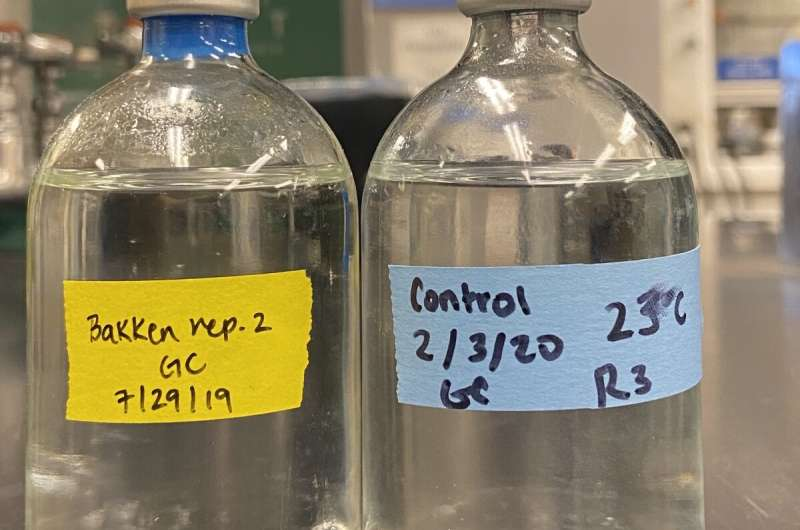 These bacteria could nosh through freshwater oil spills