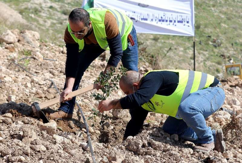"""The tree planting campaign began in Kufranjah, which one official described as """"Jordan's lungs"""", to make up for what h"""