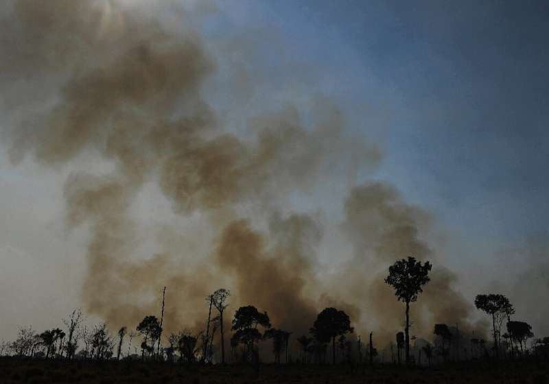 This file photo taken on August 16, 2020, shows a burnt area of Amazon rainforest reserve in Para, Brazil