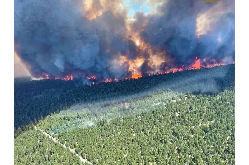 This handout photo courtesy of BC Wildfire Service shows the Sparks Lake wildfire, British Columbia, seen from the air on June 2