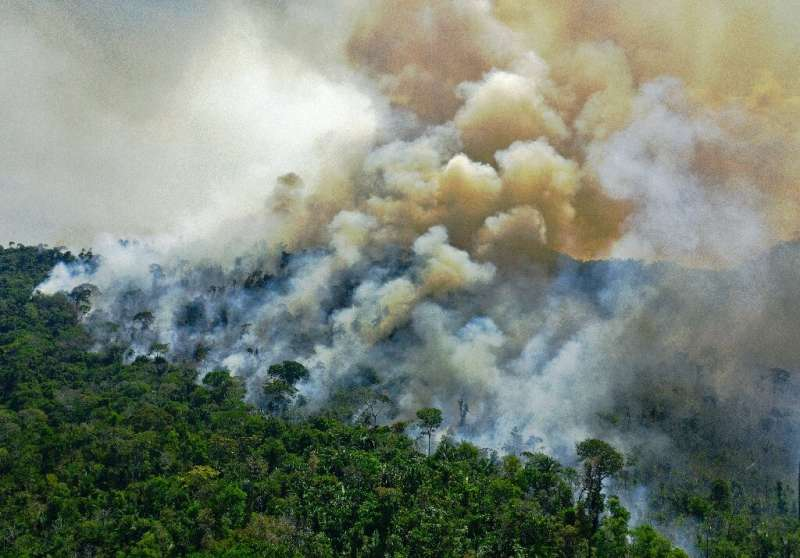 This photo taken on August 16, 2020 shows a fire in the Amazon rainforest south of Novo Progresso in Para state, Brazil