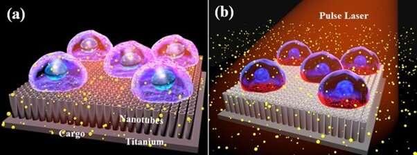 Titanium oxide nanotubes facilitate low-cost laser-assisted photoporation