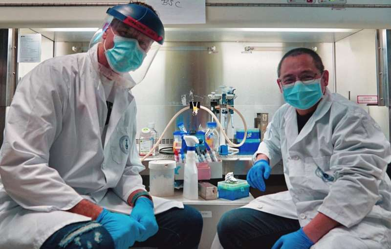 Toronto researchers develop rapid low cost method to measure COVID-19 immunity