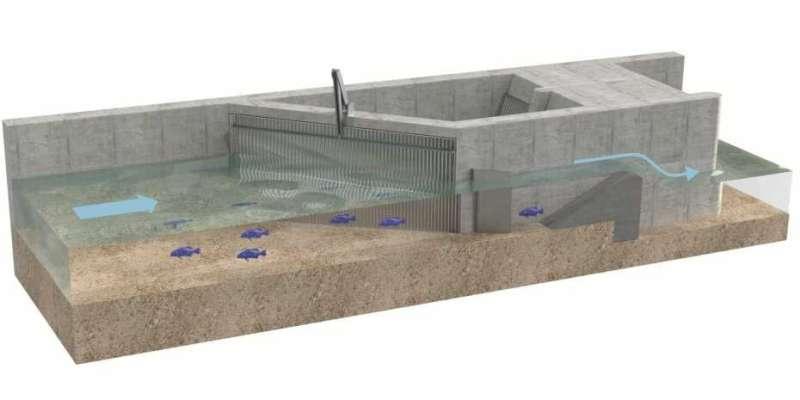 Toward more fish-friendly hydropower plants