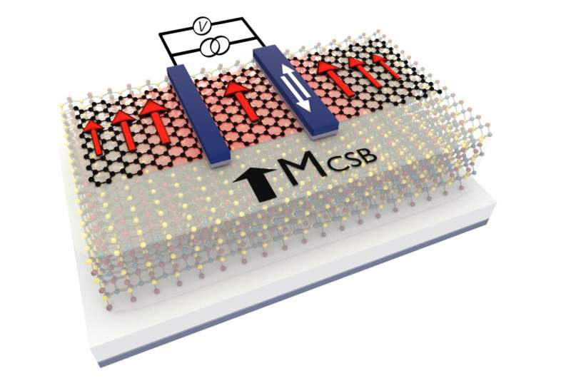 Towards 2D memory technology by magnetic graphene