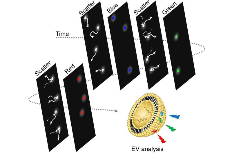 Tracking the movement of a single nanoparticle