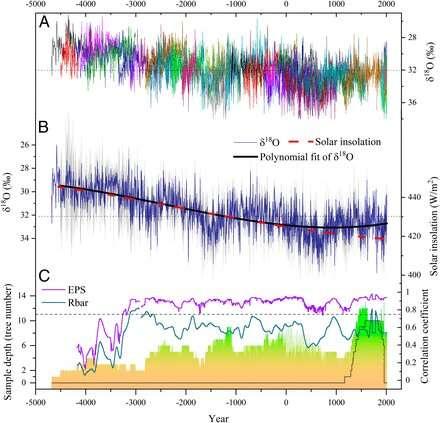 Tree-ring records reveal Asian monsoon variability