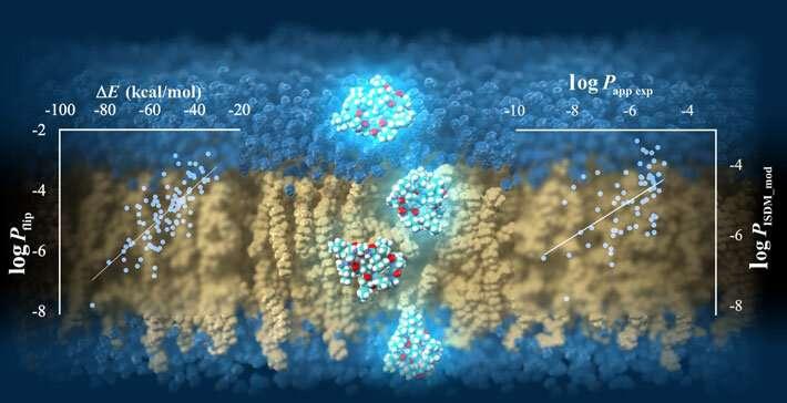 TSUBAME supercomputer predicts cell-membrane permeability of cyclic peptides