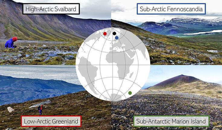 Tundra vegetation shows similar patterns along microclimates from Arctic to sub-Antarctic