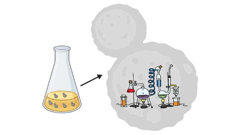 Turning yeast cells into labs for studying drivers of gene regulation