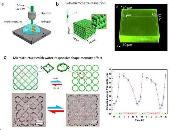 Two-photon polymerization of PEGda hydrogel microstructure with low threshold power with green laser