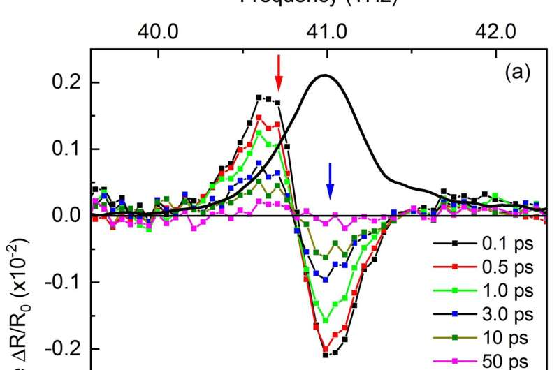 Ultrafast and coupled – atomic vibrations in the quantum material boron nitride