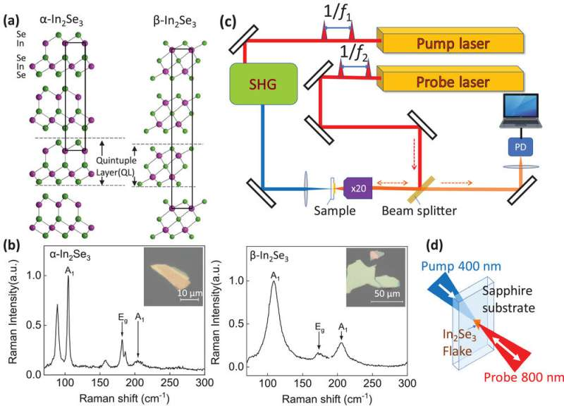 Ultrasound at the nanometer scale reveals the nature of force