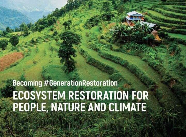 UN urges intense restoration of nature to address climate and biodiversity crises